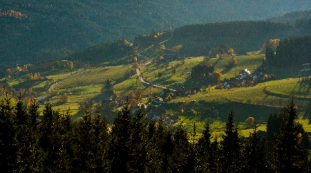 Schwarzwald-01